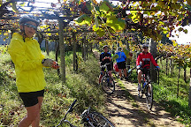 Top Bike Tours Portugal, Porto, Portugal