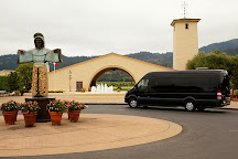 Dynamic Napa Wine Tours, Napa, United States
