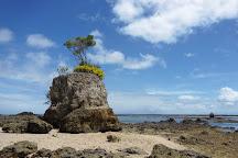 Ilha Da Pedra Furada, Marau, Brazil