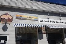 Gallery Dagfinn Bakke, Svolvaer, Norway