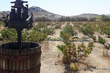 Mykonos Vioma Organic Farm, Ano Mera, Greece