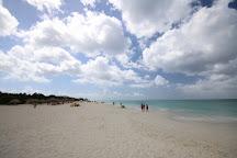 Eagle Beach, Palm - Eagle Beach, Aruba