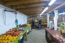 Milton Flea Market and Halfway Market, Milton, United States