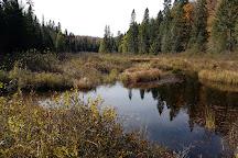 Western Uplands Backpacking Trail, Algonquin Provincial Park, Canada
