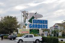 Sunken Gardens, St. Petersburg, United States