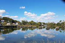 Cove Island Park, Stamford, United States