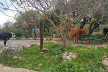 Montfort and Goren Park, Galilee, Israel