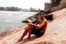 Restinga da Marambaia, Mangaratiba, Brazil