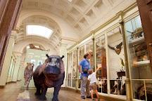 Musée d'Histoire naturelle & Vivarium, Tournai, Belgium