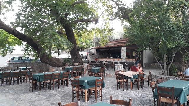 Taverne Platanias