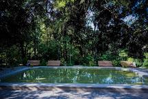 A. V. Fomin Botanical Garden, Kiev, Ukraine