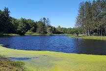 Benson Park, Hudson, United States