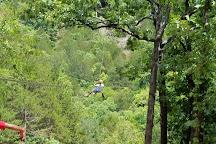 Zip Line USA, Reeds Spring, United States