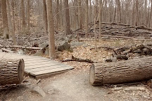 Sourland Mountain Preserve, Hillsborough, United States
