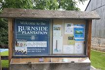 Burnside Plantation, Bethlehem, United States