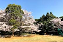 Ryugasaki Forest Park, Ryugasaki, Japan
