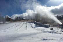 Alpine Slide at Magic Mountain, Big Bear Lake, United States