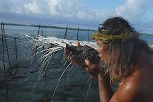 Le Palais de la mer, Maupiti Island, French Polynesia