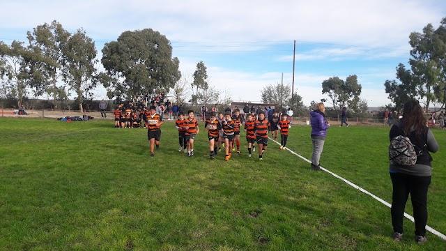 Puerto Madryn Rugby Club