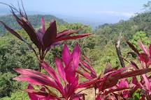 Pura Vida Gardens and Waterfalls, Jaco, Costa Rica