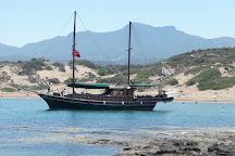 Alagadi Turtle Beach, Kyrenia, Cyprus