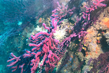 Calypso Diving Estartit, L'Estartit, Spain
