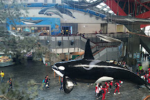 National Museum of Marine Biology and Aquarium, Checheng, Taiwan