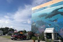 Scuba-Fun, Key Largo, United States