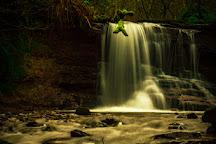 Pwll-y-wrach Nature Reserve, Talgarth, United Kingdom