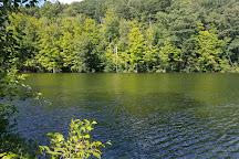 Lake Lillinonah, Brookfield, United States