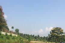 Arivu Thirukovil, Pollachi Town, India