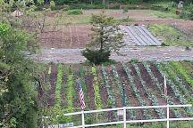Organics Today Farm, East Islip, United States