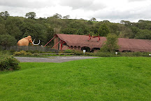 The Dinosaur Park, Tenby, United Kingdom