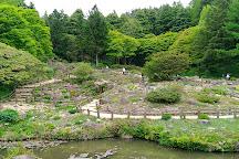 Rokko Alpine Garden, Kobe, Japan