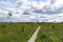Store Mosse National Park, Hillerstorp, Sweden