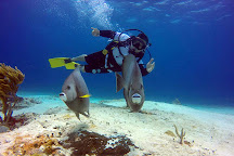 Blue Reef Divers, Cozumel, Mexico
