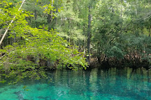 Manatee Springs State Park, Chiefland, United States