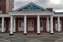 York Racecourse, York, United Kingdom