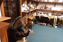 National Bird Dog Museum, Grand Junction, United States