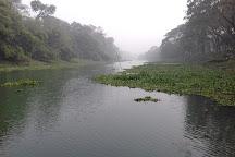 Bibhutibhushan Wildlife Sanctuary, North 24 Parganas District, India