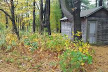 Steepletop, Austerlitz, United States