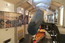 Whale Museum, Muroto, Japan