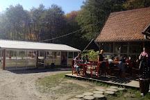 Paintball Park Servudska Suma, Samobor, Croatia
