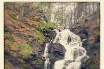 Shypit Waterfall, Pylypets, Ukraine