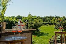 Turdo Vineyards & Winery, Lower Township, United States