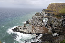 RSPB Rathlin West Light Seabird Centre, Rathlin Island, United Kingdom