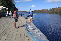 Canoe Lake Access Point, Algonquin Provincial Park, Canada