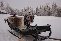 Lapland Safaris, Luosto, Finland