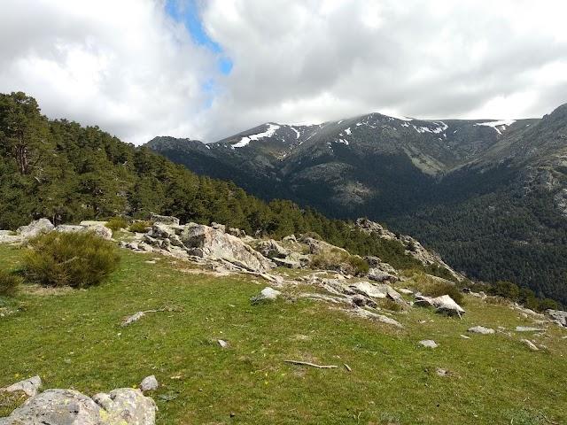 Acceso Monte Pinar De La Barranca