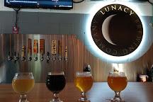 Lunacy Brewing Company, Magnolia, United States